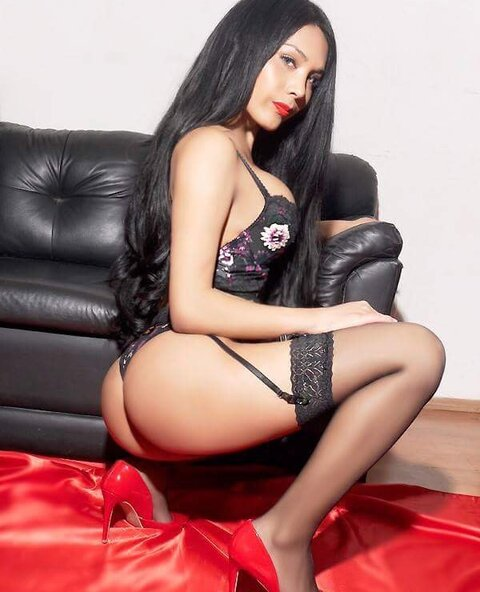 Sofia xxx beautiful and sexy shemale in brussel